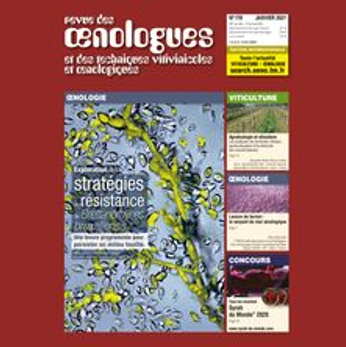 FRANCE - Revue des Œnologues n°178 -  X-ray imaging and O2 transfer